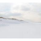 Winter White Beach by 73553