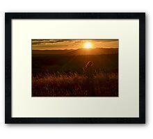 Twirling at Sunset Framed Print