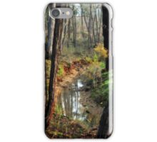 Whipstick Bush Scenery in Winter by Lorraine McCarthy iPhone Case/Skin