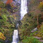 Pistyll Rhaeadr Waterfall, Powys by Jacqueline Longhurst