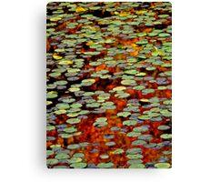 Upton Frog Pond Reflection Canvas Print