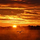 Sunrise over the St. Lawrence by Brenda Dickie