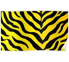 zebra pattern Poster