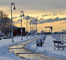Snowfall by d1373l