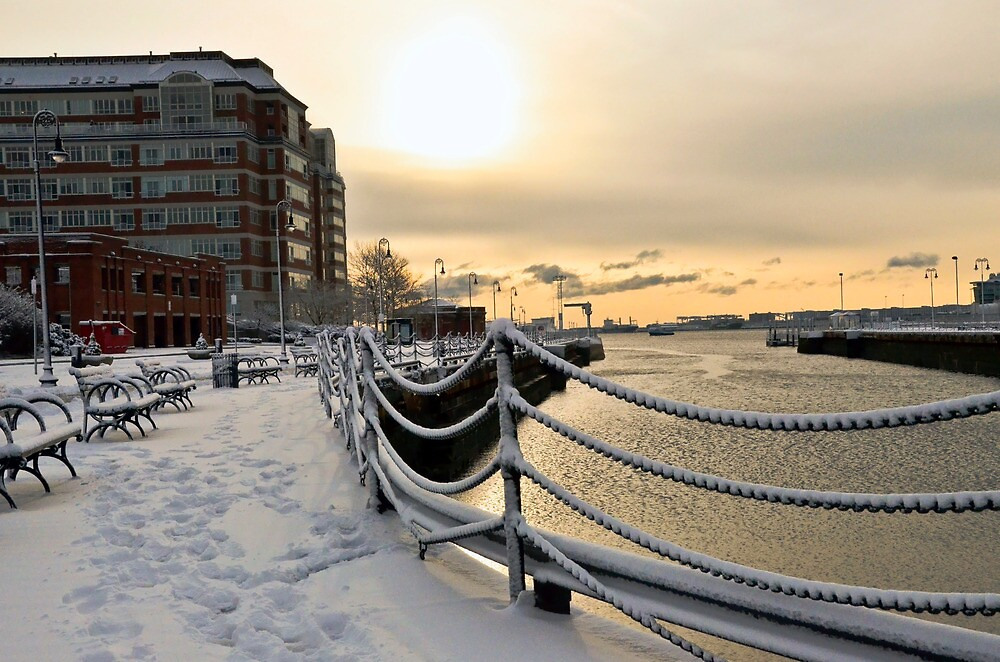 Snowfall2 by d1373l