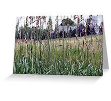 Through The Grass Greeting Card