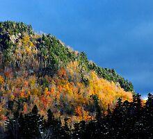 New Hampshire Hill by BavosiPhotoArt