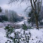 St.Leonards Gardens and Maze Hill Clock House in Snow by seymourpics