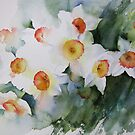 Sunny Narcissus by artbyrachel