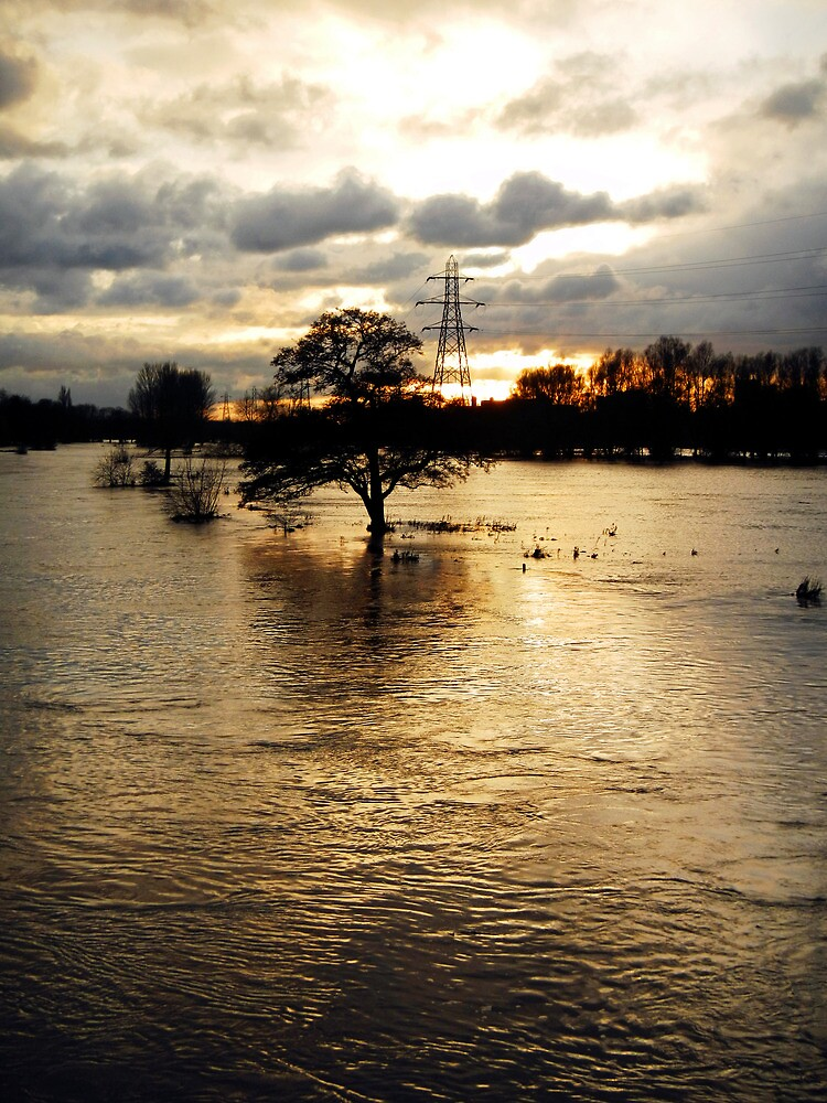 The Trent Washlands in Full Flood by Rod Johnson