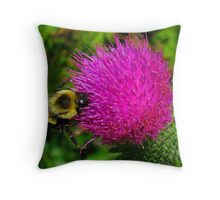 Bumble Bee On Bull Thistle Throw Pillow