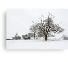 Branching Out in Winter Canvas Print