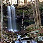 Hidden Jacoby Falls At Sundown by Gene Walls