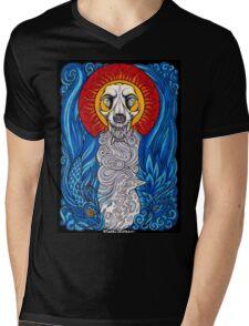 Colorado Native Mens V-Neck T-Shirt