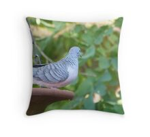 Small Peaceful Dove, Adelaide Hills, Sth. Australia. Throw Pillow