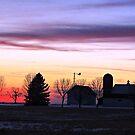 Rainbow Farm by Greg Belfrage