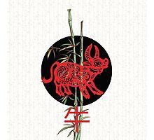 Ox (chinese zodiac) Photographic Print