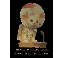 Mr. Pebbles - The first cat in space! Photographic Print