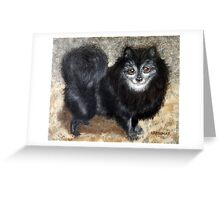 Old Rocky, Black Pomeranian Dog Greeting Card
