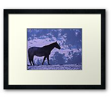 Horse and Blue Delft Framed Print