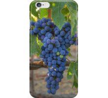 Cabernet Sauvignon iPhone Case/Skin