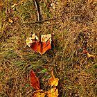 I Leaf You by mariajanae
