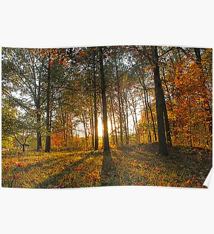 Michigan Fall Sunset Poster