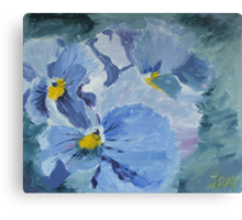Pansy Show Off Canvas Print
