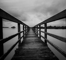 Path along calm waters by Liam Robinson