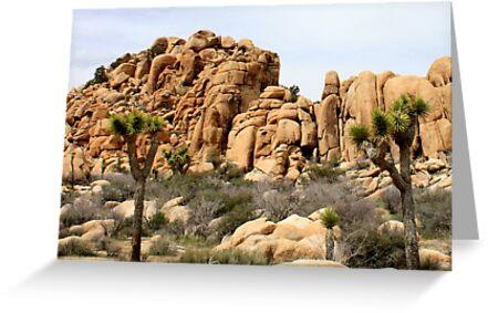 Rock Formation-Joshua Tree by Rosalee Lustig