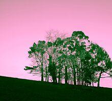 Hilhouette by Rod Ohlsson