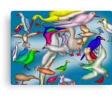 Lord Howe Island Birds Canvas Print