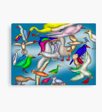 Lord Howe Island Birds Canvas Print
