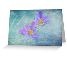 First Bloom Greeting Card