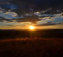 Sunset in the ACT by Alison Hill