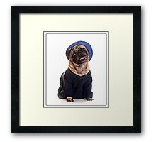 Cute Pug wearing hat and sweater Framed Print