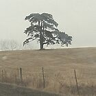 Lonely Tree by Brenda Dickie