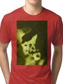 Fruit Set Shadows Tri-blend T-Shirt