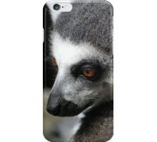 Fury friend iPhone Case/Skin