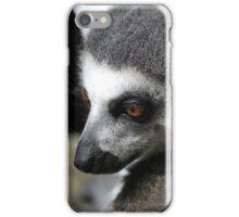 Fury friend iPhone Case/Skin