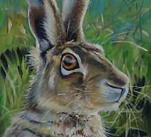'Alert Hare' by Gillian Toft by gilliantoft