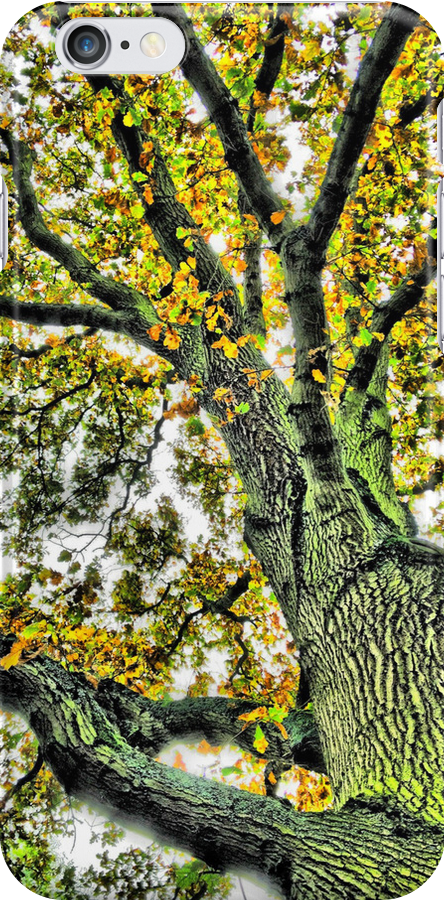 Tree by Alex & Louise Martin