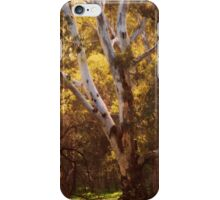 Summer Warmth by Lorraine McCarthy iPhone Case/Skin