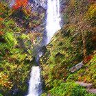 Llanrhaeadr Waterfall Powys by Jacqueline Longhurst