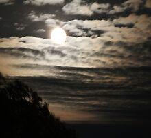 Moon Rising by Brenda Dickie