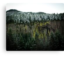 Basalt Wall Canvas Print