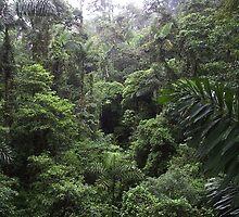 Costa Rica by Grabmatt