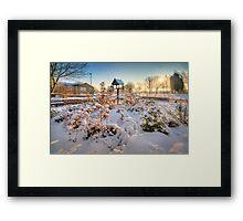 Birdhouse Framed Print
