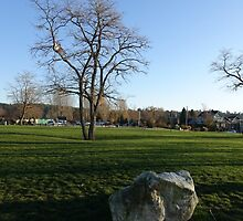 Park at Crescent Beach in White Rock, BC. by naturematters