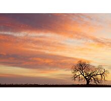 Morning Has Broken Like the First Dawning Gentle Breeze Photographic Print
